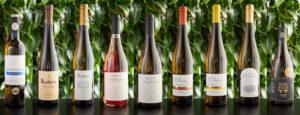 Vinho Verde – den alsidige ledsager til måltidet