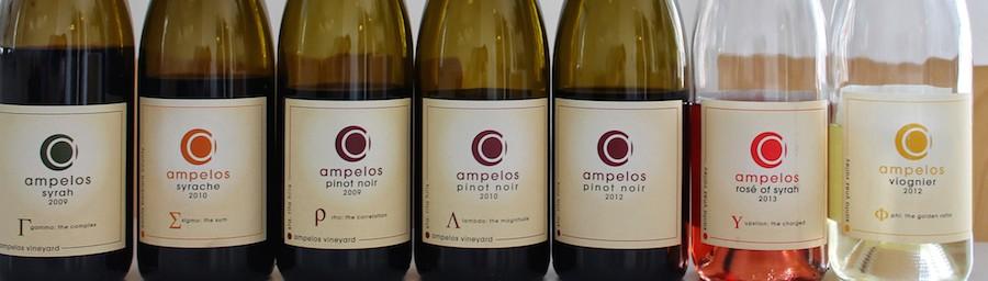 Gode køb, hvis du vil opleve, hvad amerikansk vin også kan være.