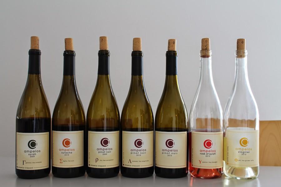 Vinene klar til smagning.