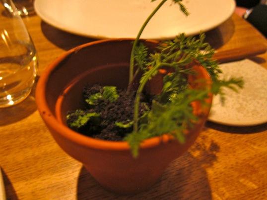 Radise, jord og græs