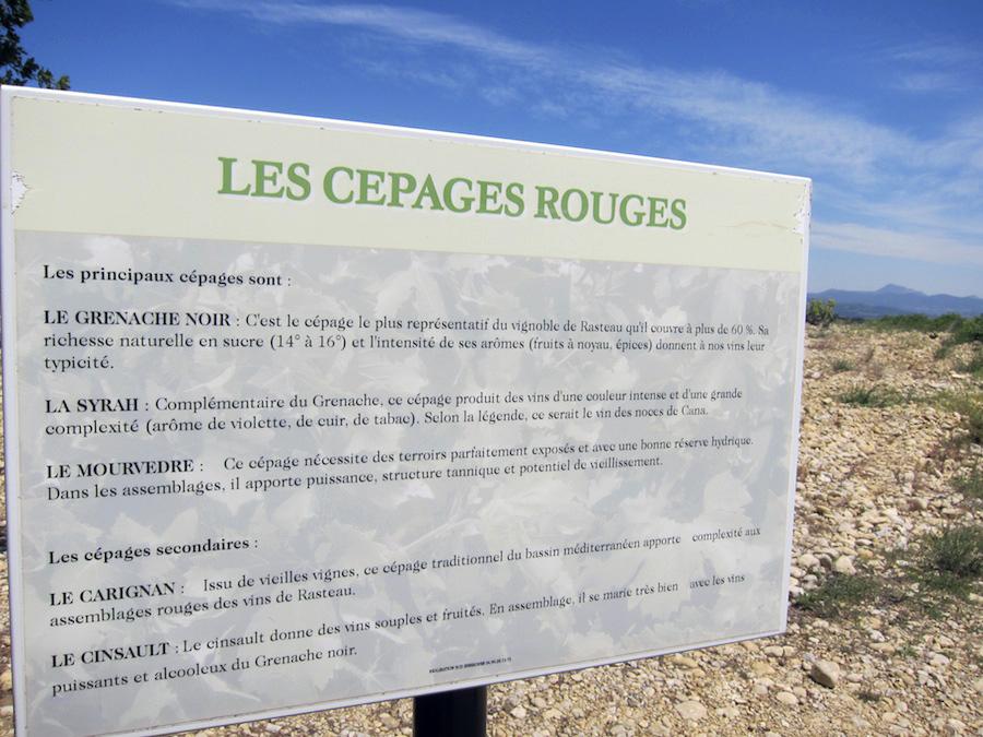 Til de franskkyndige: Disse druer anvendes i Rasteau.