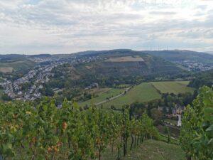 Maximin Grünhaus – mægtige vine fra Ruwer i Mosel-regionen