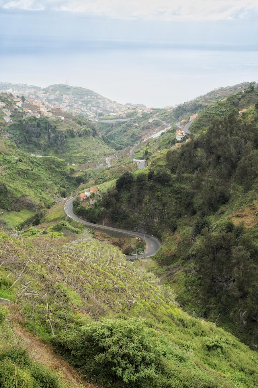 Naturen på Madeira er alsidig og udfordrende. Bemærk vinmarken nederst i billedet. Foto: PR.