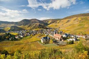 Kør på opdagelse i tysk pinot noir fra Ahr