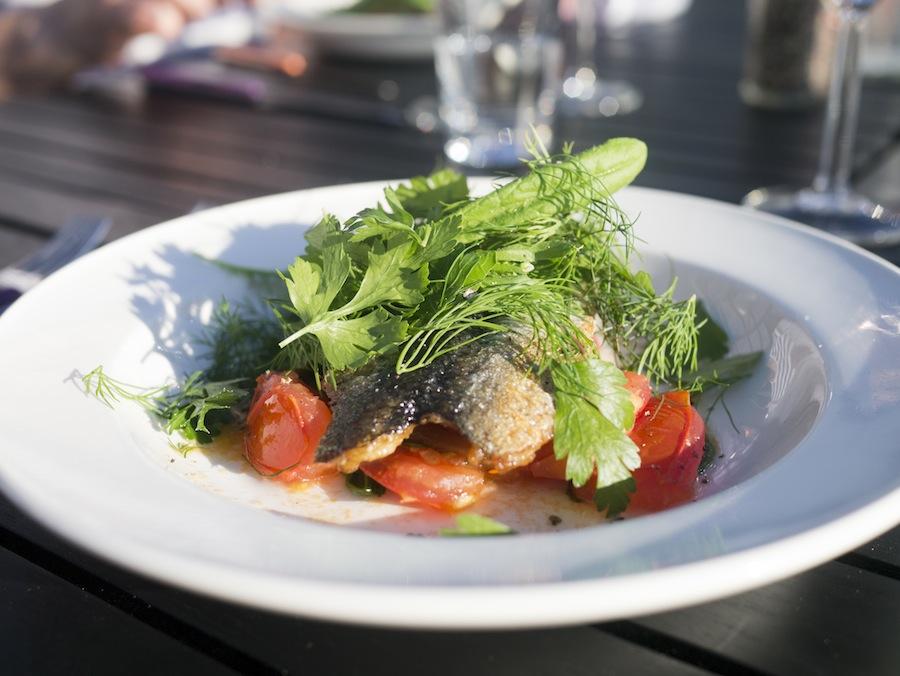 Skindstegt sild med masser af urter og bagte tomater; simpelt og velsmagende.