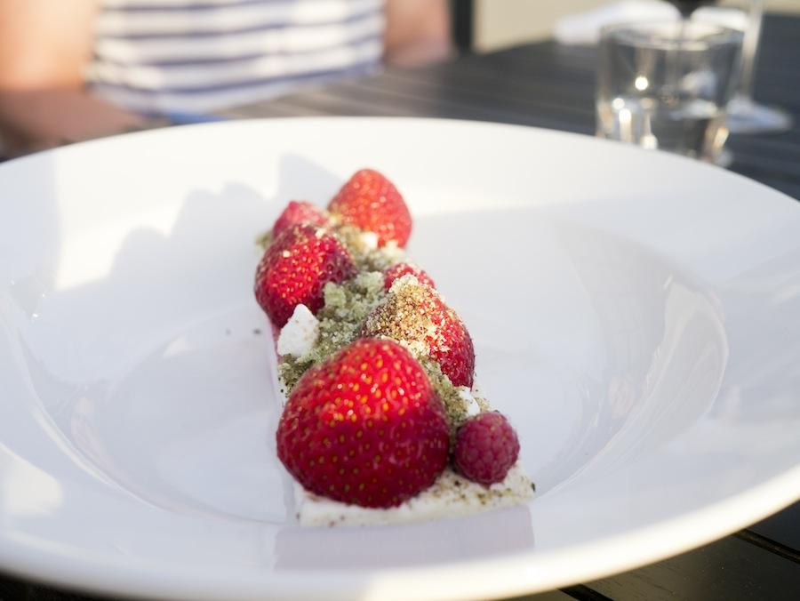 Smuk isservering med samske bær og timian.