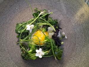 Kurhotel Skodsborg – gourmet og velvære i flot forening