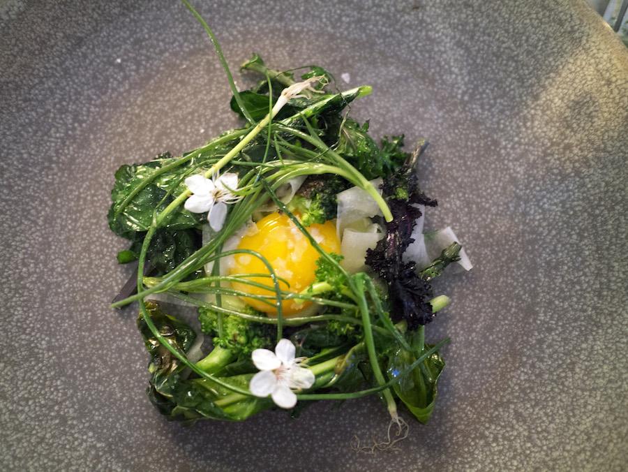 Æg i rede af brændt kål og porre. Vegetarer behøver ikke at være triste.