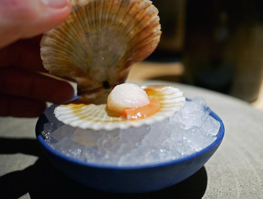 noma seafood