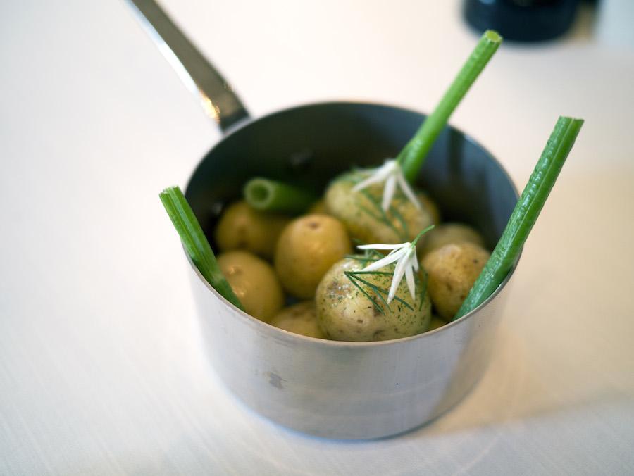 Nye kartofler med dildmayo og ramsløgsblomster.