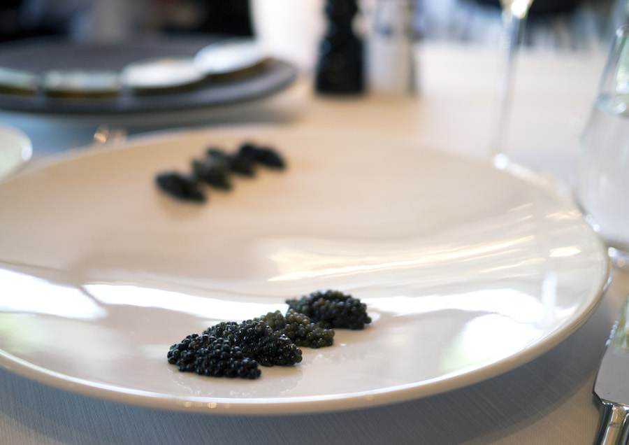 Fire slags kaviar klar til at blive prøvesmagt.