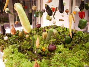 Twins Garden i Moskva laver unik russisk grøntsagsvin
