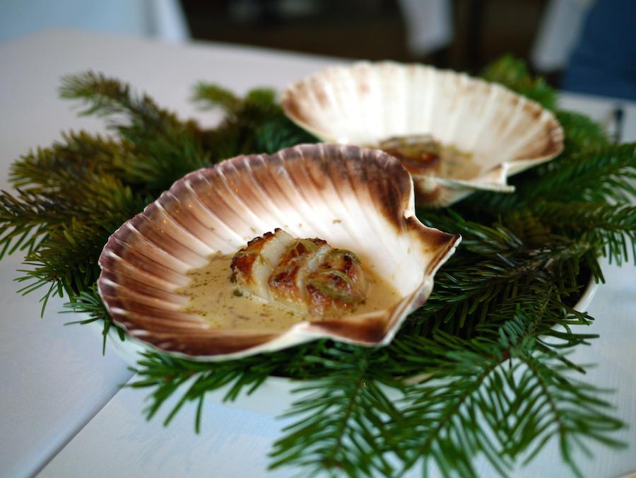 Norske kammuslinger i egen skal med yuzu, tørret oksehjerte og gran.