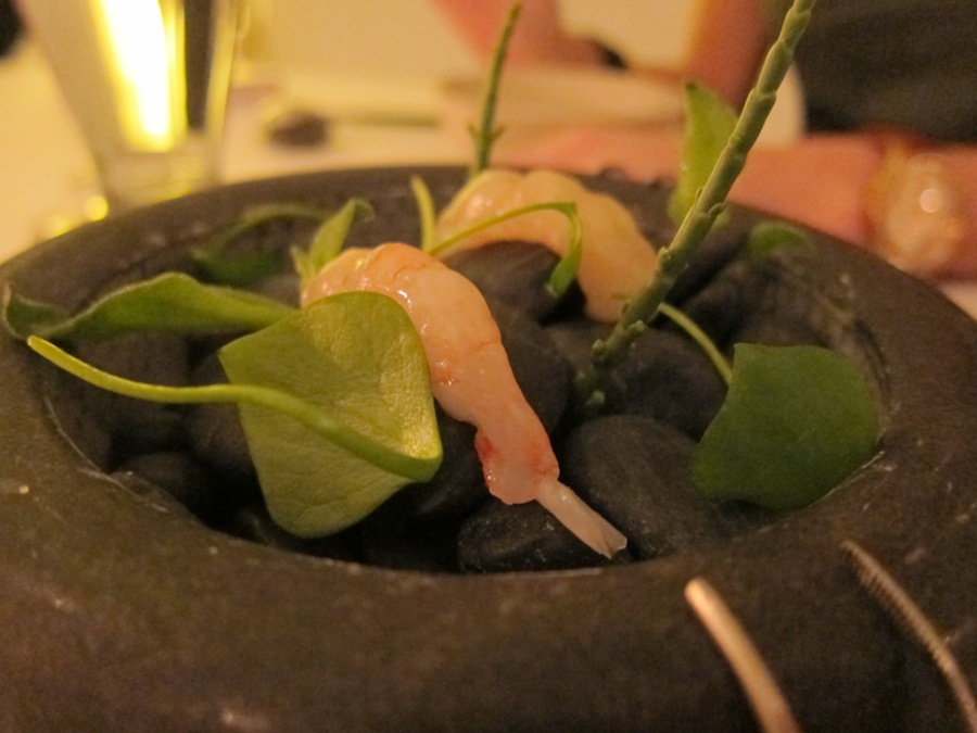 •Saltede rejer fra Sverige (ligesom skagensrejer) med salturt og skyrcreme (ligner sand) med söl. Blød, sødmefuld snak med skyrens drøje, proteinrige struktur