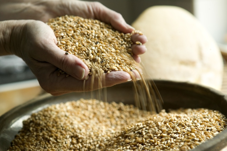 Og Skærtoft Mølles velsmagende korn en anden.